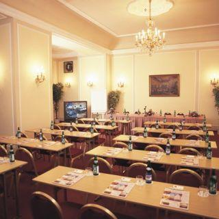 Hotel Ambassador - Zlatá Husa