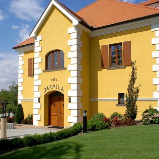 Hotel Akademie - Velké Bílovice