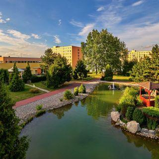 Top Hotel Praha - Japonská zahrada