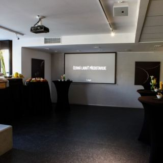 Art & Event Gallery Černá labuť
