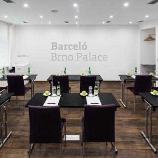 Barceló Brno Palace - Morava