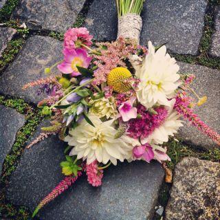 Lucernička Flowers