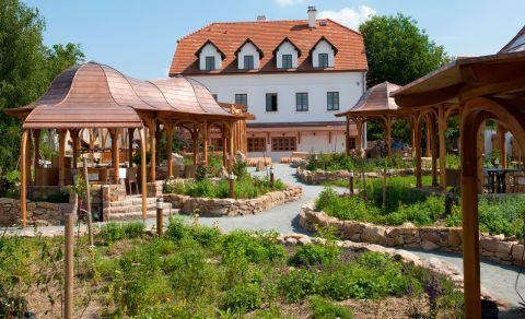 Babiččina zahrada