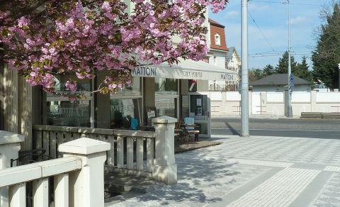 Cafe Pointa